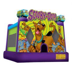 ScoobyDooLg-550x550