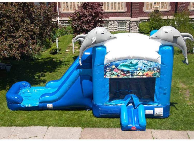 Dolphin Bounce House Slide